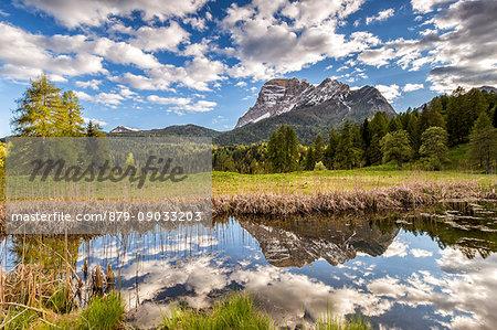 Mount Pelmo reflected in a pond,San Vito di Cadore,Belluno district,Veneto,Italy,Europe