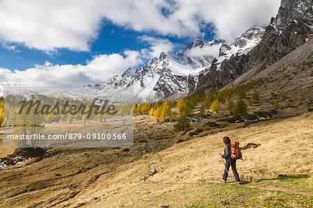 A girls walks in Buscagna Valley (Alpe Devero, Alpe Veglia and Alpe Devero Natural Park, Baceno, Verbano Cusio Ossola province, Piedmont, Italy, Europe)