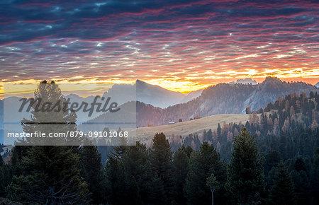 Passo delle Erbe, Bolzano Province, Trentino Alto Adige, Italy