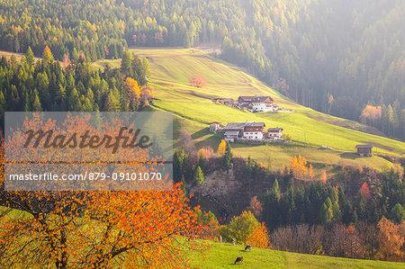 Funes Valley, Bolzano Province, Trentino Alto Adige, Italy