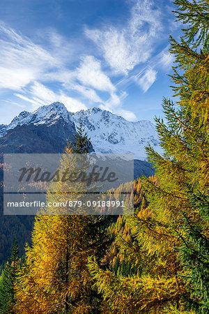 Mount Disgrazia in autumn season, Chiareggio, Valmalenco, Province of Sondrio, Lombardy, Italy