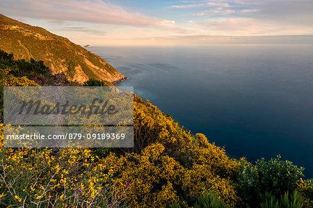 spring sunset on Riomaggiore coast, National Park 5 Terre, municipality of Riomaggiore, La Spezia province, Liguria district, Italy, Europe