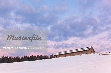 The stable of Mezzomiglio Alm at dusk, Prealps of Belluno, Farra d'Alpago, Belluno province, Veneto, Italy