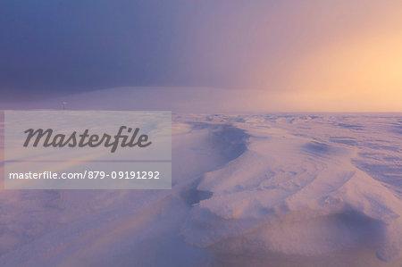 Twilight and mist on the snowy landscape, Pallas-Yllastunturi National Park, Muonio, Lapland, Finland
