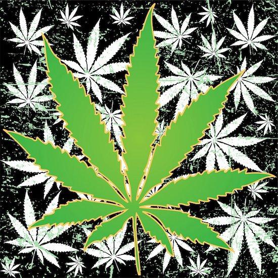 Illustration of marijuana leaves as a background. Stock Photo - Royalty-Free, Artist: Duda78, Image code: 400-06067507