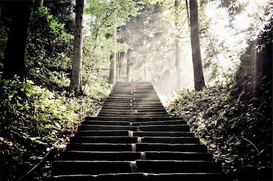 stairs in Zhagjiajie national park Stock Photo - Royalty-Free, Artist: Borya, Image code: 400-06076535