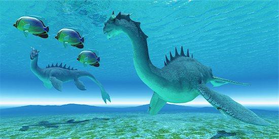 Two Sea Dragon fight over territory while three Redfin Angelfish swim away. Stock Photo - Royalty-Free, Artist: Catmando, Image code: 400-06208243