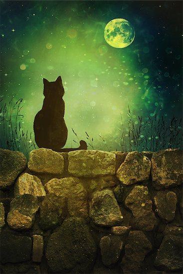 Black cat on old rock wall Halloween night Stock Photo - Royalty-Free, Artist: Sandralise, Image code: 400-08335299