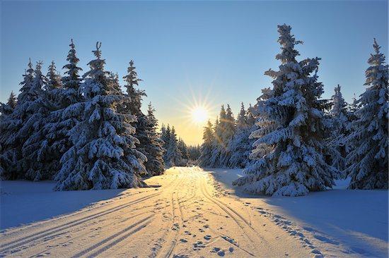 Snow Covered Trees and Ski Trail, Schneekopf, Gehlberg, Thuringia, Germany Stock Photo - Premium Royalty-Free, Artist: Raimund Linke, Image code: 600-05803692