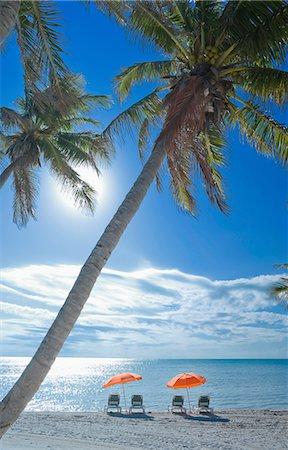 Key West Beach Florida Usa Stock Photo Premium Royalty Free Code