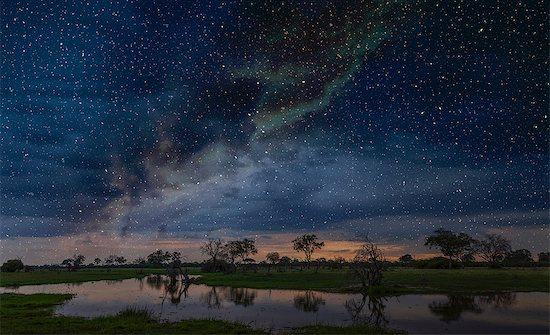 Starry night sky over swamp, Okavango Delta, Botswana, Limpopo, South Africa, Africa Stock Photo - Premium Royalty-Free, Image code: 614-09027071