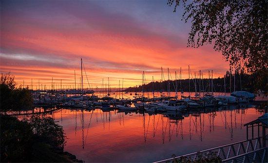 Boats in harbour at sunset, Bainbridge, Washington, USA Stock Photo - Premium Royalty-Free, Image code: 614-09127283