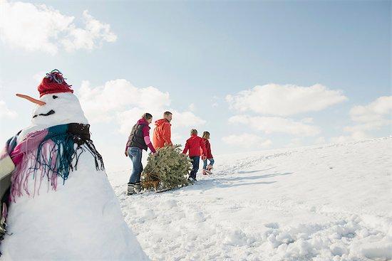 Family pulling spruce on sledge, Bavaria, Germany Stock Photo - Premium Royalty-Free, Image code: 6121-07740030