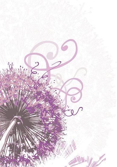 Illustration of a purple flower Stock Photo - Premium Royalty-Free, Image code: 628-02953695