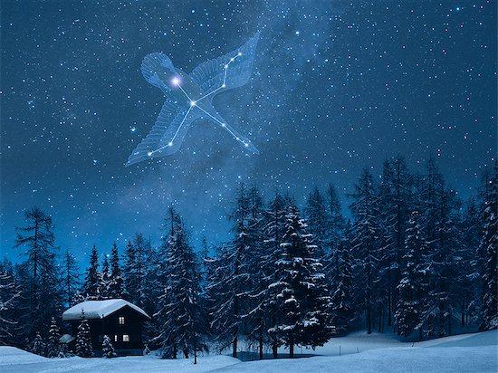 Cygnus constellation in the snowy Switzerland Stock Photo - Premium Royalty-Free, Image code: 622-06398395