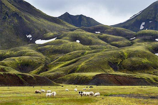 Landmannalaugar, Highlands of Iceland Stock Photo - Premium Royalty-Free, Image code: 649-08085917