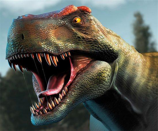 Tyrannosaurus Rex Head Study Stock Photo - Premium Royalty-Free, Image code: 679-08031685