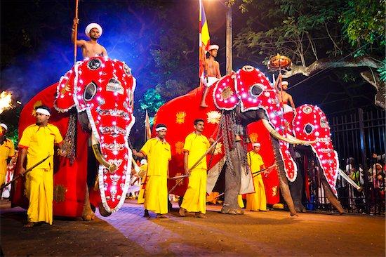 Procession of Elephants, Esala Perahera Festival, Kandy, Sri Lanka Stock Photo - Premium Rights-Managed, Artist: R. Ian Lloyd, Image code: 700-05642340