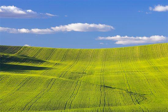Farmland, Spain Stock Photo - Premium Rights-Managed, Artist: F. Lukasseck, Image code: 700-00688236