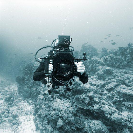 Underwater Cameraman Stock Photo - Premium Rights-Managed, Artist: David Nardini, Image code: 700-01374508