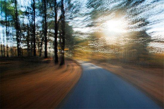 Country Road, Martha's Vineyard, Massachusetts, USA Stock Photo - Premium Rights-Managed, Artist: Michael Eudenbach, Image code: 700-03392479