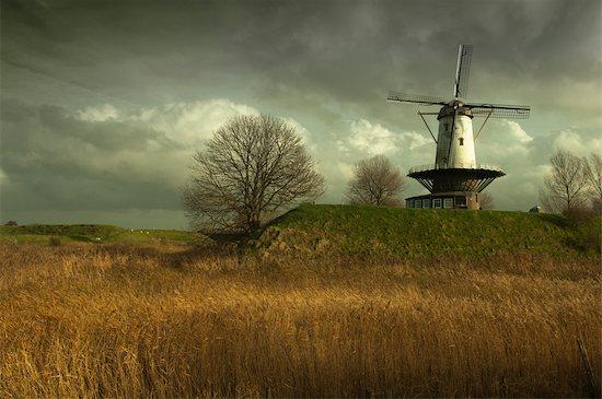 Windmill on Town Wall, Veere, Zeeland, Netherlands Stock Photo - Premium Rights-Managed, Artist: Ben Seelt, Image code: 700-03403617