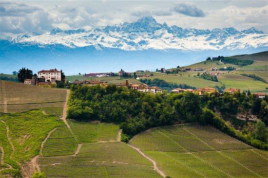 Asti Province, Piedmont, Italy Stock Photo - Premium Rights-Managed, Artist: R. Ian Lloyd, Image code: 700-03660112